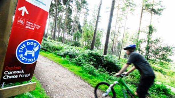 Follow the Dog; Cannock Chase's original and much loved dedicated mountain bike trail,