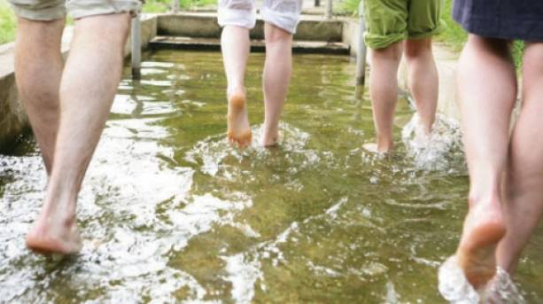 Enjoy Staffordshire Trentham Estate Barefoot walk