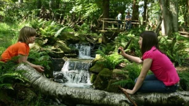 Exploring the woodlands at Trentham Estate