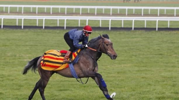 A jockey riding Kingston Hill
