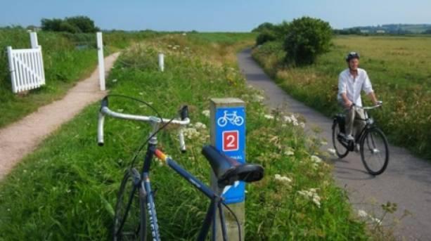 Exe Estuary Trail