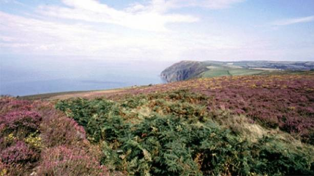 View over Exmoor, Devon