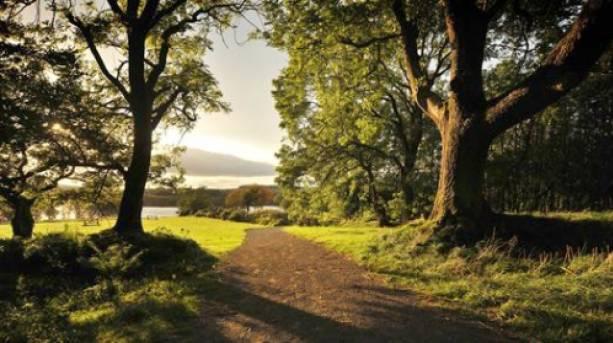 Derwent reservoir, Durham