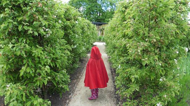 A little girl on a fairy tale quest