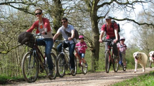 A family cycling through the Forest of Dean