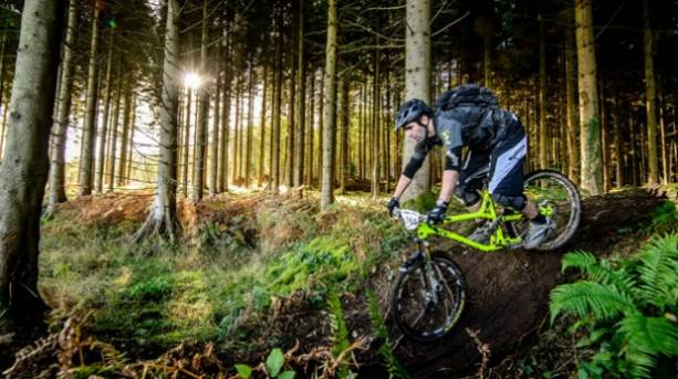 A man cycling through the Forest of Dean