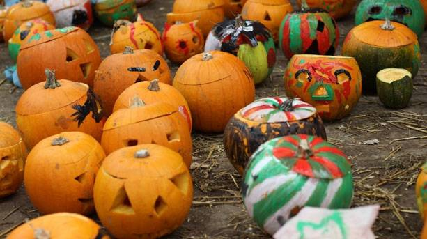 Carved halloween pumpkins at Twinlakes
