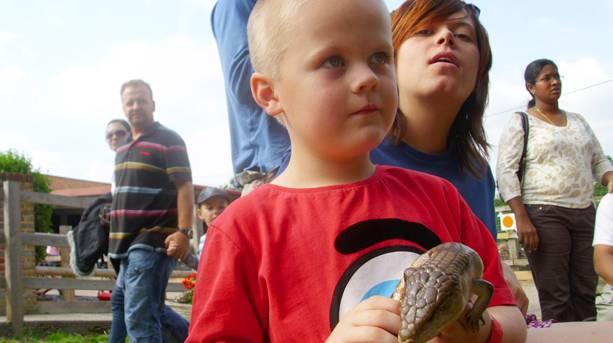 A little boy holding a lizard