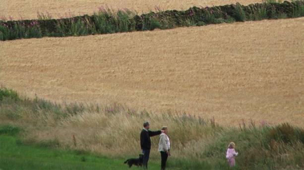 Fields near picturesque Penistone