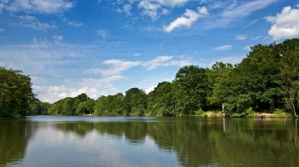 Cannop Lake in the Forest of Dean