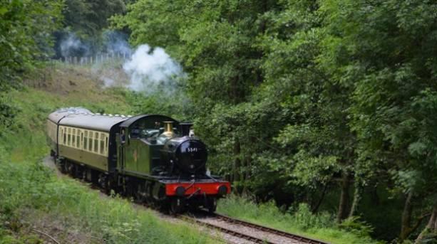 A steam train riding through the Forest of Dean