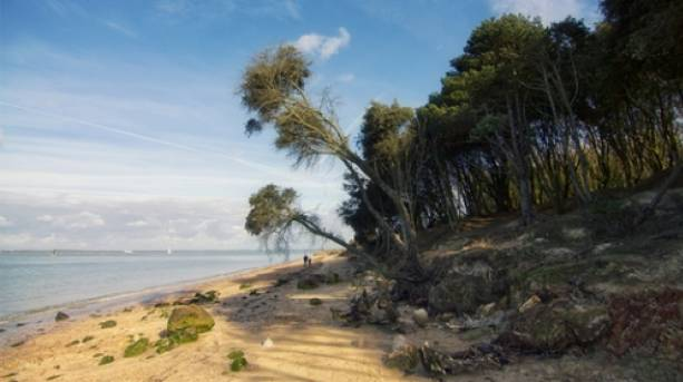 Fort Victoria Coastline, Isle of Wight
