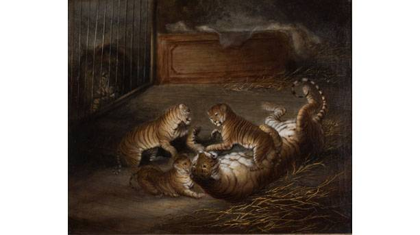 Three æligerÆ cubs bred between a lion and a tigress at the Royal Menagerie, Windsor Great Park, Oct 1824, Attr to Richard Barrett D Private Collection