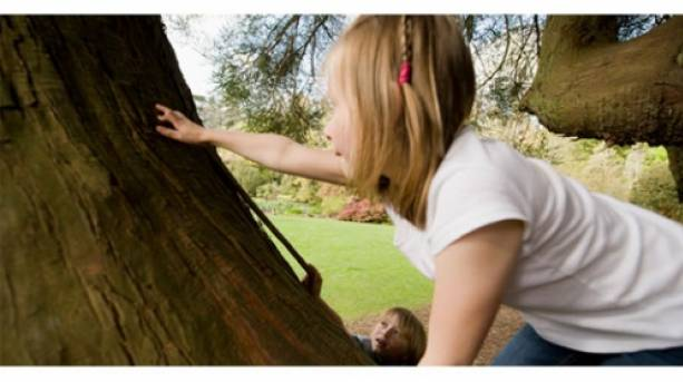 Climbing trees with Goodleaf