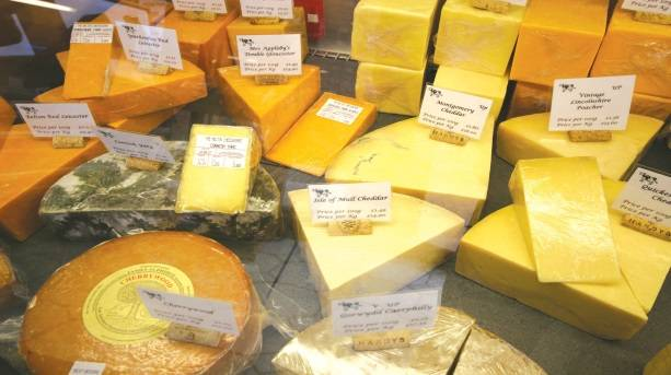 A selection of cheeses