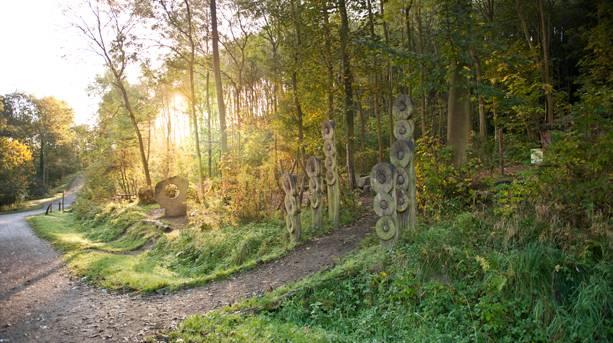Guisborough Forest trail