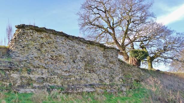 Wall ruins at caistor St Edmund, Norwich