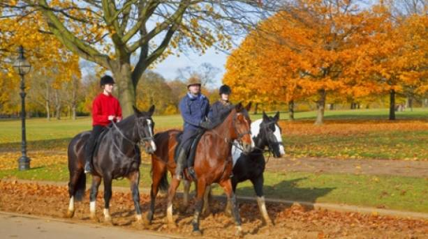 Horse riding in Hyde Park