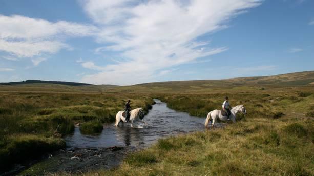 Horseriding on Dartmoor