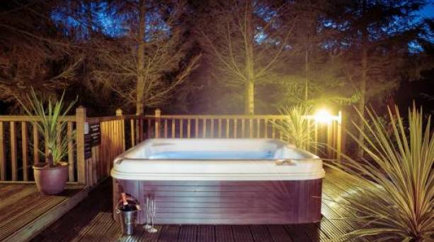 The Hollies Forest Lodges