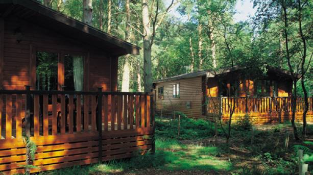 Woodland Lodges at Kelling Heath