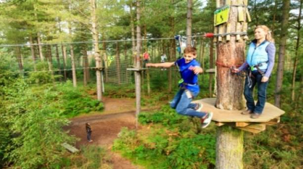 Swinging through trees at Go Ape