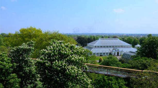 Kew Gardens Conservatory