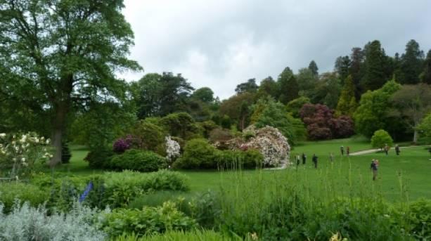Killerton Estate Gardens