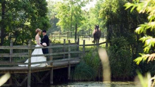 Romantic surroundings at Layer Marney Tower