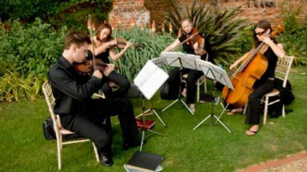 Add to the atmosphere with a string quartet in the garden
