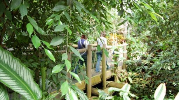 Navigating Tropical World in Leeds