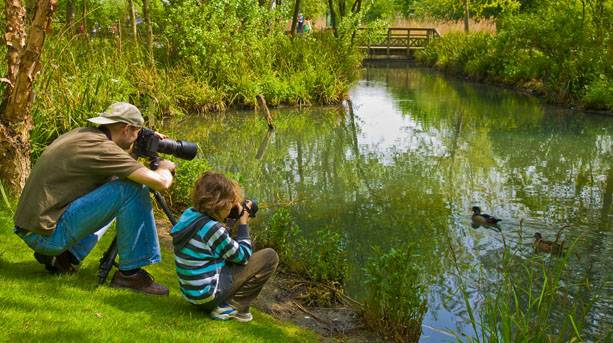 A father and son photograph the wildlife at the Barnes Wetlands centre