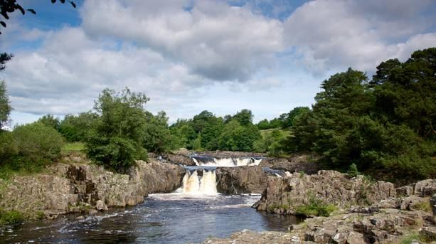 Low Force waterfalls, Durham Dales