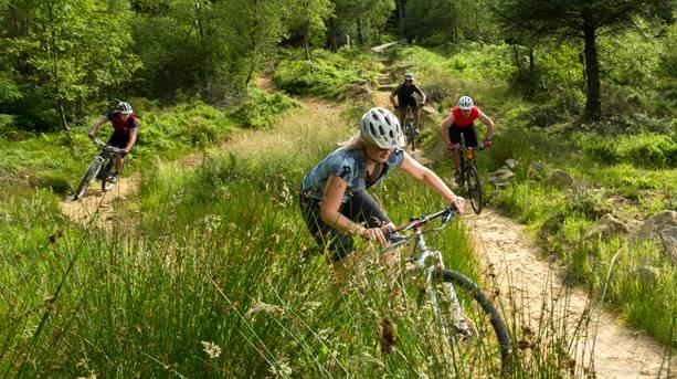 Mountain biking in Dalby Forest
