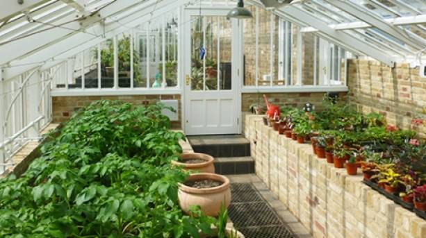 You'll find unusual and exotic plants in the glasshouse at Myddleton House Gardens