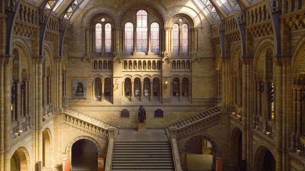 Inside the main hall of the Natural History Museum