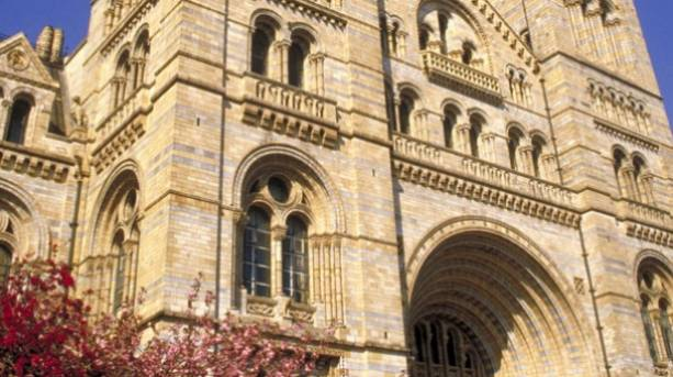 Natural History Museum London Work Experience