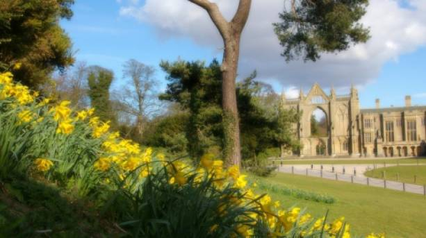 Spring at Newstead Abbey