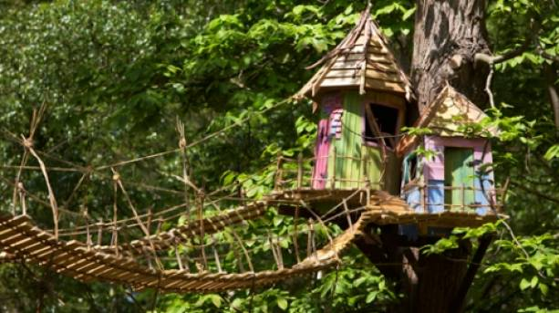 Up in the trees at Bewilderwood