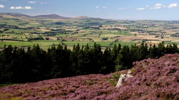 Enjoy walks in the rural Northumberland landscape