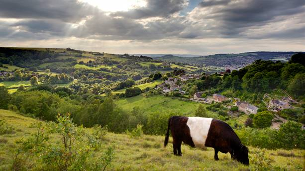 Views of the Cotswolds