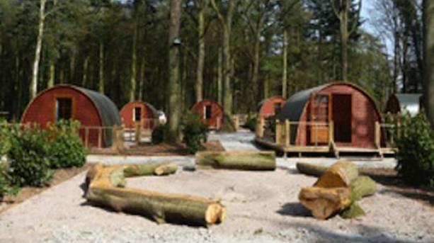Oaker Wood Glamping village