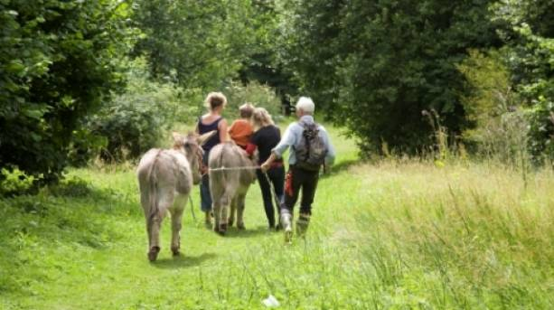 Family walking with a donkey