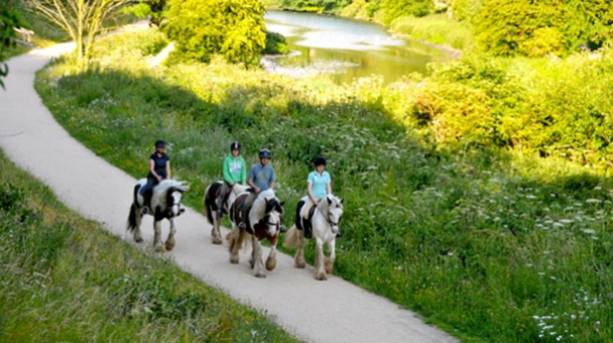 Pony Trekking at Clumber Park