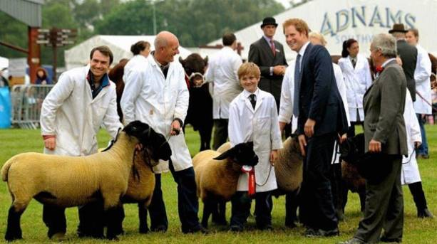Prince Harry at the Suffolk Show