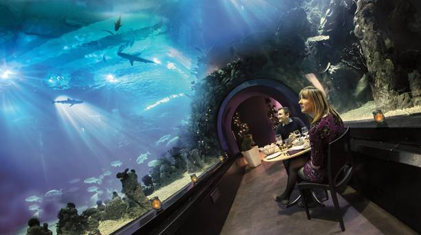 Private dining at The Deep