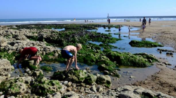 Young boys playing in the rockpools at Roker beach