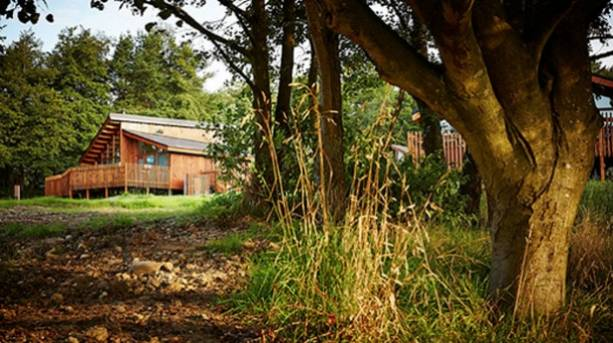 Cropton lodges in the heart of Cropton Forest in the North York Moors National Park