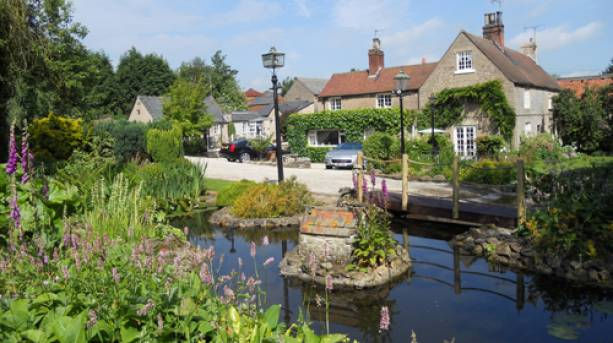 A pond outside Browns B&B in Nottinghamshire