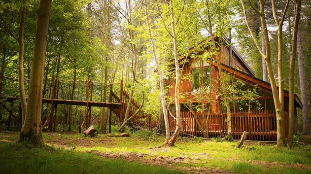 A lodge in the middle of the forest at Thrope Forest in Norfolk
